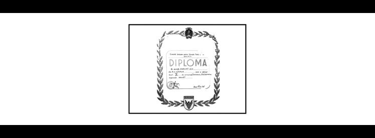 Ion C - Diploma. Ten