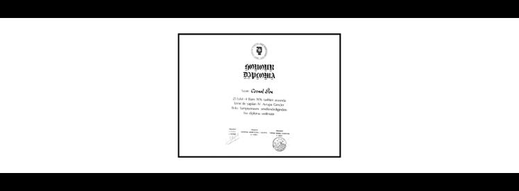 Ion C - Diploma Thirteen